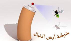 شركة مكافحة حشرات بجازان ارض الخيال