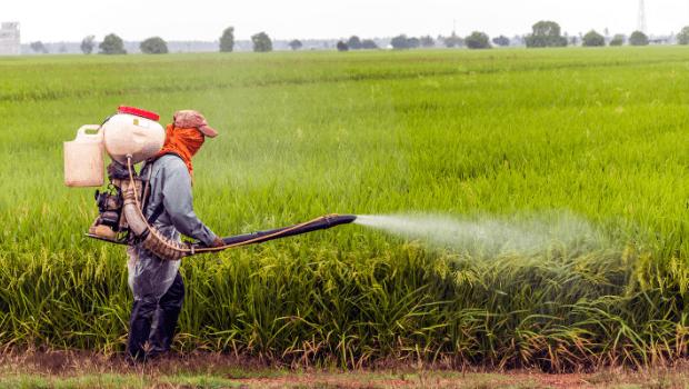 شركة رش مبيدات بمحايل عسير